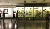 EVNT_0004_Vietnam_War_Remnants_Museum_95